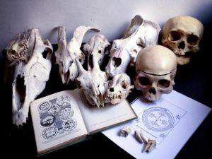 Aforismos Ocultistas